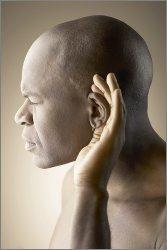 noise health