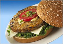 soy burger
